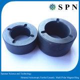 Anelli multipolari di ceramica/sinterizzati del ferrito permanente del ferrito del magnete per il motore