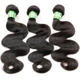 Tessuto dei capelli umani di Remy del Virgin dei capelli ricci di Kinkys di Afro