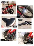 新しくスマートな小型20インチのFoldable電気バイク250W 36Vの安い電気折るバイク
