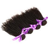 Curly profundo brasileiro do Virgin do cabelo molhado e ondulado do cabelo brasileiro profundo brasileiro do Virgin do cabelo 4PCS do Virgin da onda