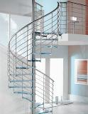 Современное здание из стекла спиральную лестницу лестница (PR-S05)
