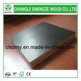 Shengze Wood a fabriqué du film face au contreplaqué