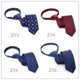 Commerce de gros fabricant cravate Polyester Zipper cravate (Z09-Z12)