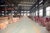 Het elektrisch Lang Roestvrij staal van de Pomp van de Schacht diep goed of Gietijzer