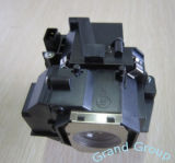 Replacement Projector Lamp (ELPLP49)