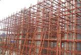 Système de construction d'échafaudage de serrure de tasse de colonne