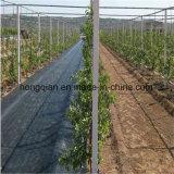 高品質の抵抗の庭カバーマットPP WvovenのGeotextileのWeedの紫外線障壁