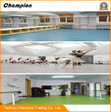 PVC Slittare-Resistente Dance Floor del Rolls della pavimentazione del linoleum del PVC di grande disegno