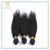 Heiße Verkaufs-natürliche Farben-verworrener lockiger Malaysia-Jungfrau-Haar Wigh Fabrik-Preis Wfmkc-001
