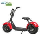 1000W EECを持つ電気オートバイのスクーター都市ココヤシは証明した