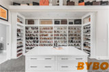 MDF moderno do luxo com o Wardrobe do revestimento da pintura (BY-W-151)
