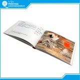 고품질 잘 설계되는 색깔 책 인쇄