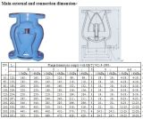 Молчком задерживающий клапан подъема (DRVZ)