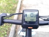 250W 36V MID Motor Fat Tire bicicleta elétrica com bateria de lítio com certificação En15194