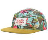 2016 Un gran diseño Suese Brim Camper Cap Hat