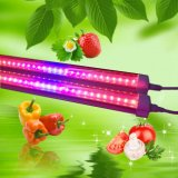Rojo azul luz de color T8 1500mm 28W 5FT LED crecer tubo de luz