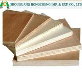 Poplar Okoume Bintangor Birch folheado de madeira contraplacada comercial