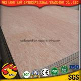 2mm -30mm Okoume/Bintangor/Birch Pinefurniture Frade Commercial Plywood