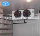 Chambre froide de bonne qualité pour l'élément de compresseur de réfrigération de marque