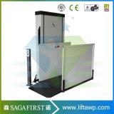 Eingabe 150kg 1m bis 3m Plattform-Treppen-Aufzug-älterer Rollstuhl-Aufzug