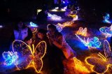 Luz feericamente da corda do diodo emissor de luz da decoração do casamento do Natal do partido