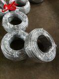 Corde galvanisée 6X24+7FC de fil d'acier