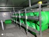 Sbs APPのUnderlaymentの防水膜のための中国の強さのフィルム