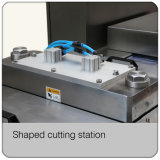Dumpling Thermoforming Vacuum Map Packaging Machine