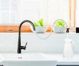 Tirez vers le bas de conception simple robinet évier de cuisine