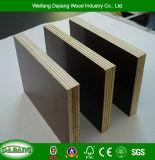 Contre-plaqué de construction de garantie de qualité avec le film réutilisable, imperméable à l'eau et noir/Brown