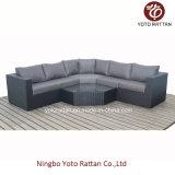 Rattan nero Sofa Set per Outdoor (1303)