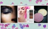 La primavera de purpurina en polvo se aplican a la moda y Cosmética impermeable