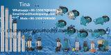 1HP de hete RandPomp van de Instructie van de Verkoop Pm80 Zelf met de Technologie van Italië
