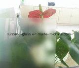 Het Extra Duidelijke Zuur Geëtstet Glas van uitstekende kwaliteit