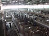 Chaîne de production d'installation laitière de positionnement complet