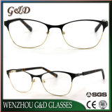 Het nieuwe Optische Frame van het Oogglas van Eyewear van de Glazen van het Metaal Model