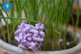 Supergeruch-Steuertofu-Katze-Sänfte-hinzugefügter Lavendel frisch