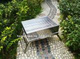Barbecue au charbon de bois en acier inoxydable