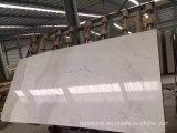 Mármore branco de Volakas para telhas do revestimento e da parede