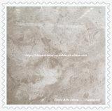 Fornitore cinese della fabbrica che elabora le mattonelle di marmo Polished della natura per la casa