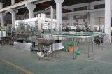 Machine rotatoire automatique de jus de bouteille d'animal familier de remplissage à chaud