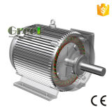 65kw 3 단계 AC 저속 Rpm 동시 영구 자석 발전기, 바람 또는 물 또는 수력 전기 힘