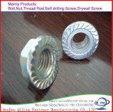 Meilleur galvanisé vendant la noix Hex DIN6923 de bride d'acier du carbone