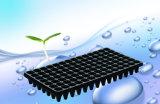 Bandejas de plástico de germina o de plantas de cultivo de plantas e sementes