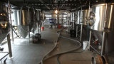 Los tanques Cilíndrico-Cónicos de la fermentadora del acero inoxidable