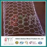 金網電流を通された六角形ワイヤー網の六角形の金網の網