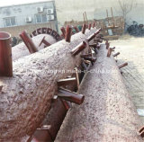 فولاذ يغلفن اصطناعيّة جوز هند برج