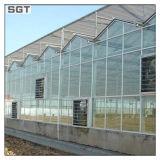 glas van de Serre van het Ijzer van 4mm het Lage voor Landbouw