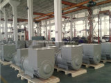 200kw zu 320kw Faraday Brand WS Brushless Electric Generators in China