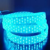 Leomay 4 fios Flat Vertical LED Rope Light